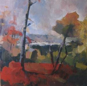 Roussillon en Provence - Acrylique sur toile - 1/1m - octobre 2008